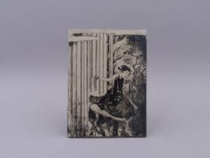 DE GROOT Sébastien - Reproduction estampe Suzuki Harunobu - Fille cascade