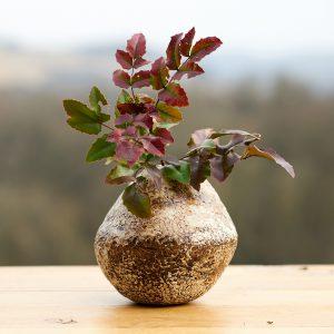 THIBAUD Laure - Vase